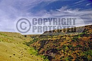 Golan Heights 0024