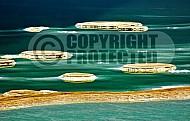 Dead Sea 003