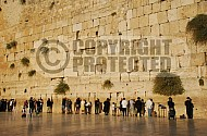 Kotel Man Praying 011