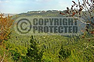 Judaean Hills 001