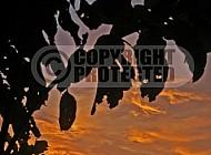 Peru Sunset 014