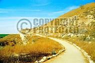 Tel Lachish 013