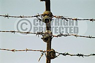 Mauthausen Barbed Wire Fence 0005