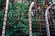 Chelmno The Gate 0004