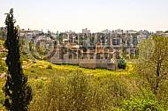 Jerusalem Valley Of The Cross 002