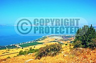 Kinneret Sea of Galilee 007