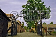 Auschwitz Camp Gates 0014
