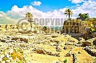 Tel Megiddo Ruins 006