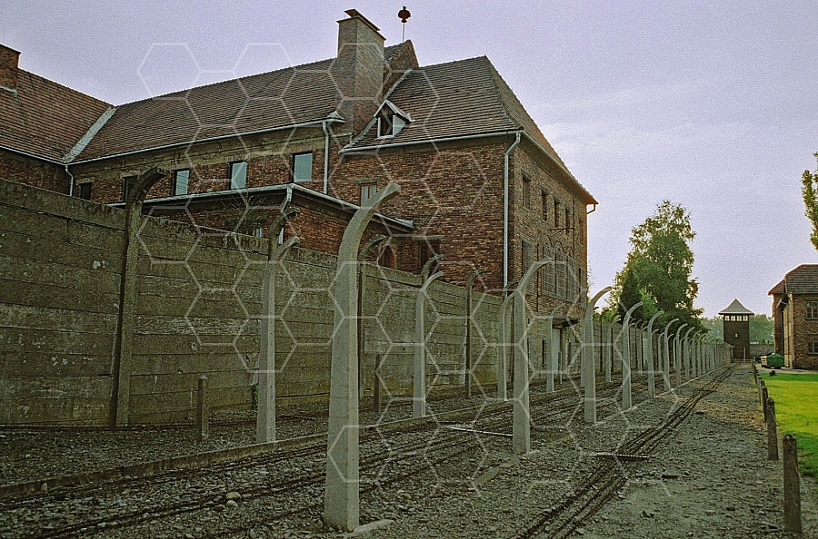 Auschwitz Electrified Barbed Wire Fence 0020
