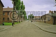 Auschwitz Barracks 0022
