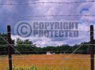 Westerbork Barbed Wire Fence 0010