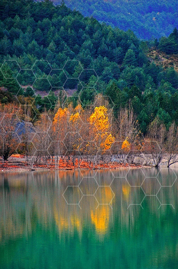 Foliage Reflections Spain 006