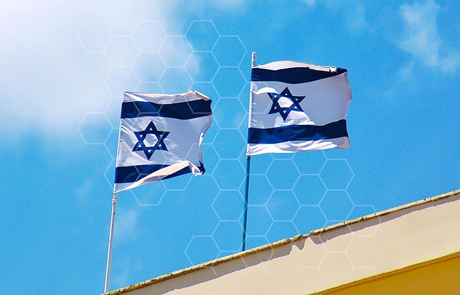 Israel Flag 021