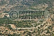 Judean Hills 0004