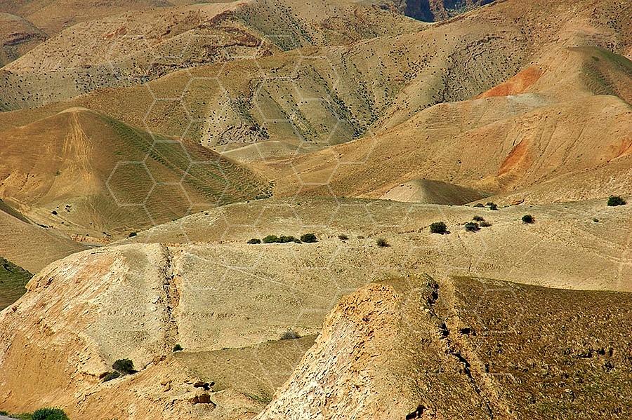 Judean Desert 011