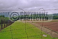 Natzweiler-Struthof Barbed Wire Fences 0004