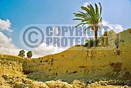 Tel Megiddo City Wall 001