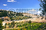 Jerusalem Mount Of Olives 018
