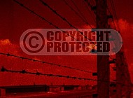 Birkenau Electrified Barbed Wire Fence 0008