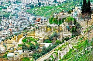 Jerusalem City Of David 003