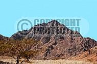 Mount Solomon 015