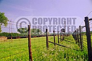 Majdanek Barbed Wire Fence 0008
