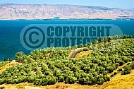 Kinneret Sea of Galilee 013