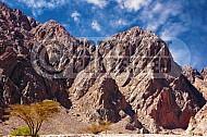 Mount Solomon 013