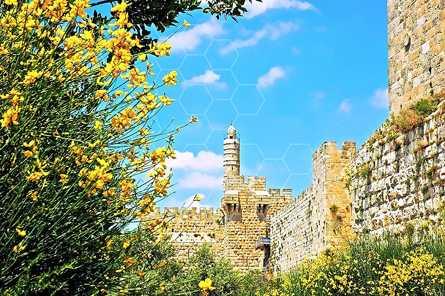 Jerusalem Old City David Tower 012