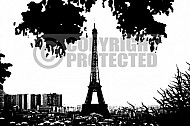 Paris - Eiffel Tower 0019