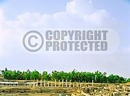 Beit She'an Roman Ruins 007