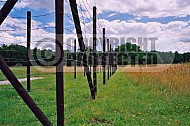 Westerbork Barbed Wire Fence 0009