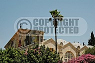 Jerusalem Gethsemani 0016