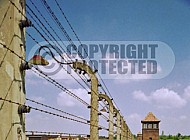 Birkenau Electrified Barbed Wire Fence 0009
