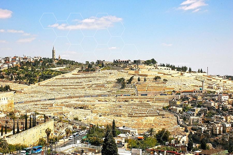 Jerusalem Mount Of Olives 015