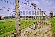Birkenau Electrified Barbed Wire Fence 0011