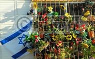 Israel Flag 055