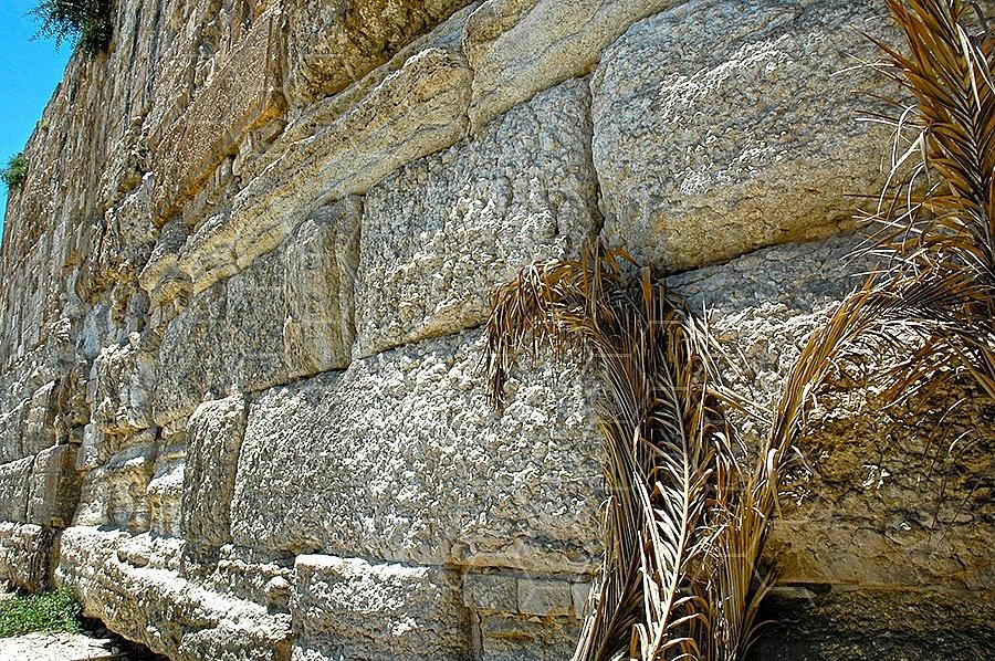 Jerusalem Old City Walls 014