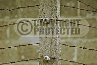 Sachsenhausen Barbed Wired Fence 0003