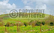 Golan Heights 008
