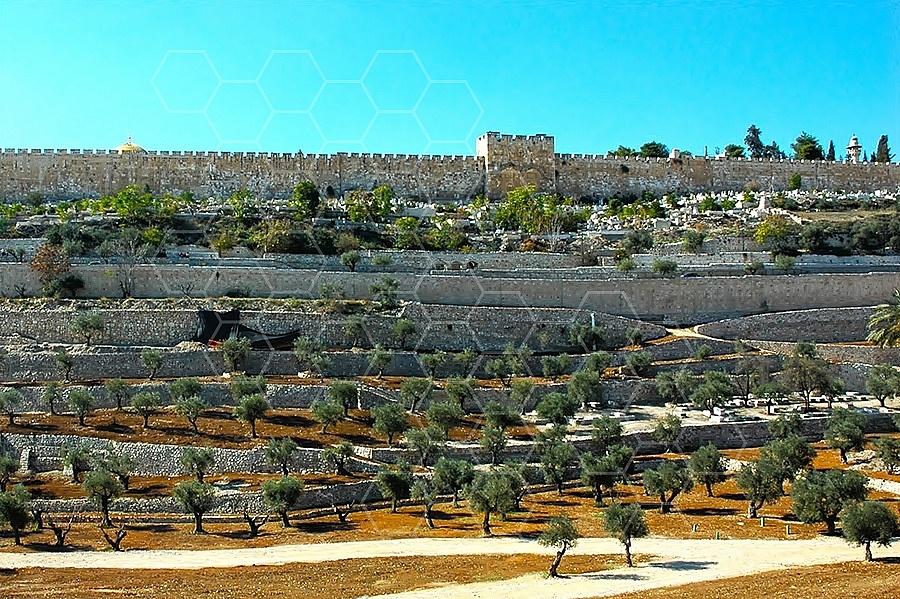 Jerusalem Kedron Valley 007