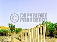 Beit She'an Cardo 005