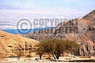 Mount Solomon 008