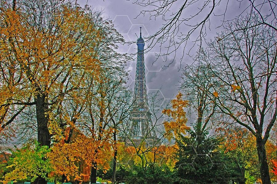 Paris - Eiffel Tower 0014