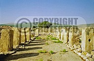 Tel Hazor Storehouse 002