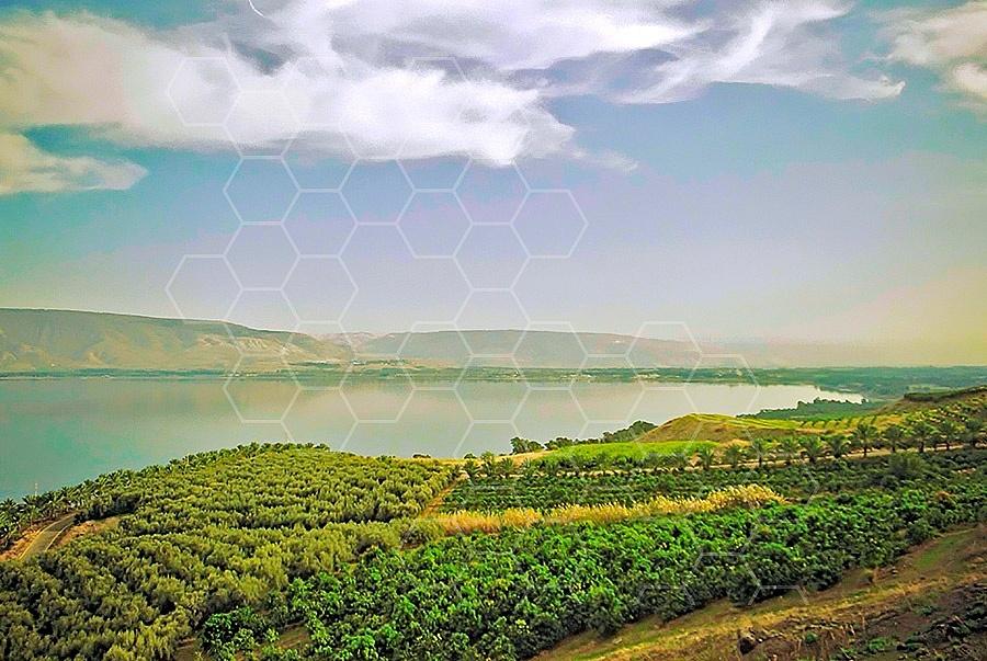 Sea Of Galilee 017