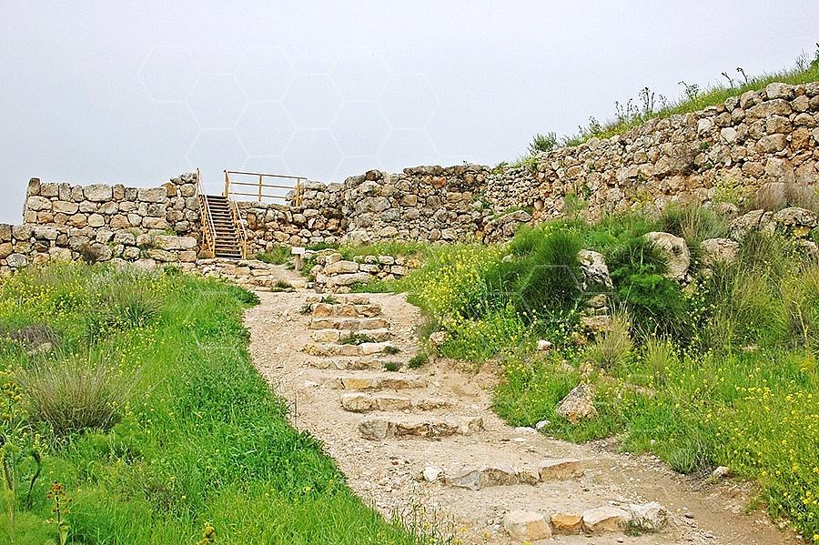 Tel Lachish 010