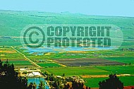 Hula Valley 010