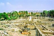 Beit She'an Roman Ruins 016