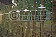 Buchenwald Barbed Wire Fence and Watchtower 0004